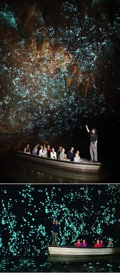 The Kawiti Glow Worm Caves