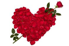 200 Free Pictures of Hearts & Love Hearts: Best online source of heart images, heart wallpaper, valentine hearts, love heart symbol, heart patterns & clip art. Beautiful Flowers Images, Romantic Flowers, Beautiful Roses, Rose Images, Flower Images, Flower Pictures, Heart Images, Heart Pics, Heart Pictures
