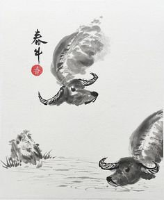 Original Chinese Calligraphy, Spring Ox, Japanese Calligraphy, Wall Art, Zen Art, Ink Painting, Brus Zen Painting, Pebble Painting, Chinese Painting, Chinese Art, Chinese Brush, Japanese Calligraphy, Calligraphy Art, Zealand Tattoo, Deer Pictures