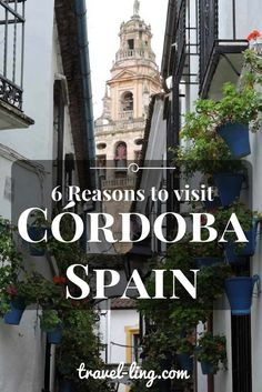 6 reasons to visit Cordoba in Spain