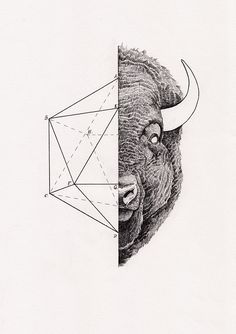 Awesome Bison print by Peter Carrington on Mammoth & Co.   http://www.mammothandcompany.com/shop/icosabison-by-peter-carrington/#
