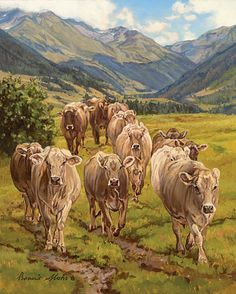 Creation of the Cow Brown Swiss (Bonnie Mohr)