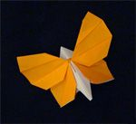 Great site for origami and other paper/fabric folding and cutting techniques. - Janneke's Vlinder