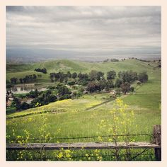 The Bay from the Milpitas hills, California