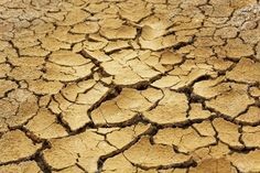 10061743-Dry-soil-in-arid-areas-Stock-Photo-change-dry-climate.jpg (1300×866)