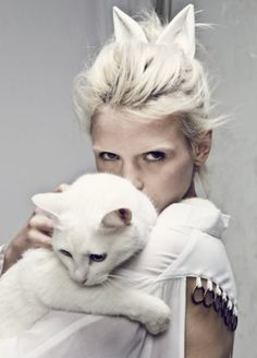 Cute white cat - looks very similar to my kitty, Blanco.