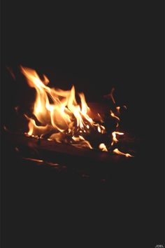 Free burning fire, campfire and fireplace animated gifs - best fire image animation collection. Gif Animé, Animated Gif, Fire Animation, Fire Image, Les Gifs, Cinemagraph, Aesthetic Gif, Gothic Aesthetic, Magical Christmas