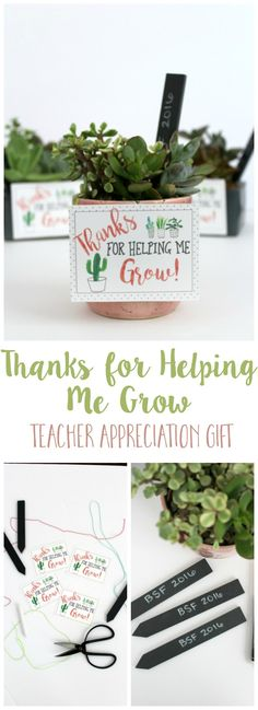 Thanks for Helping Me Grow Teacher Appreciation Gift