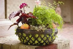 Bountiful Baskets By Design | Biltmore Inspirations - Celebrate Every Day with Style