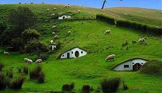 Casas-ecologicas-del-futuro-hobbits.jpg 655×379 pixels