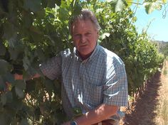 Charles Back, Spice Route and Fairview South African winemaker South African Wine, Wines, Men Casual, Spice, People, Mens Tops, Spices, Casual Male Fashion, People Illustration