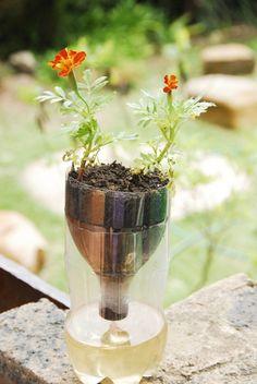 #Ideas : Self-Watering Seed Starter Pots