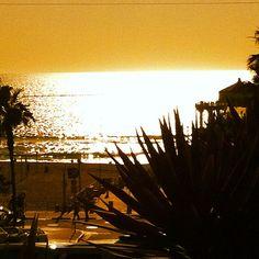 Golden - Manhattan Beach, CA