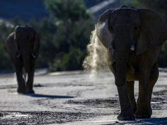 La belleza del norte de Namibia (© Paul Goldstein/Exodus/Rex Features)