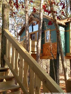 7 Cool Tree House Hotels - Main Street. Go Out on a Limb. Who said tree houses were just for kids? From the English countryside to the Costa Rican rain forest, here are seven of the coolest we've found that are sure to take your vacation to new heights.