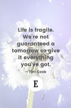 Take advantage of today. Quote by Tim Cook