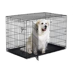 "MidWest iCrate Double Door Folding Metal Dog Crate w/ Divider Panel Floor Protecting ""Roller"" Feet & Leak-Proof Plastic Tray; x x Inches XL Dog Breed Extra Large Dog Crate, Large Dogs, Xxxl Dog Crate, Dog Travel Crate, Car Travel, Wire Dog Crates, Pet Crates, Airline Pet Carrier"