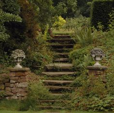 Beautiful stone steps in the garden