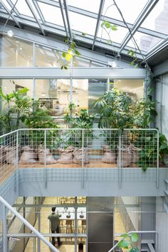 Gallery - Blue Bottle Coffee Kiyosumi-Shirakawa Roastery & Cafe / Schemata Architects - 8