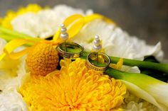 Krásné fotografie našich prstenů od spokojených novomanželů. Mnohokrát děkujeme, že se s námi dělíte o svoji radost. Tereze a Tomášovi přejeme jen to nejlepší do společného života. Vyberte si i vy prsteny, které zpečetí vaši lásku.
