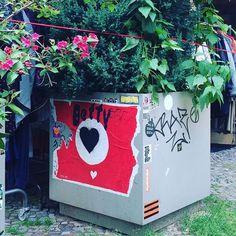 urban kraut's #GreenFavs  #IloveBettykraut seen @ Oderberger Straße, #Berlin  #urbangardening #urbangarden #urban #urbankraut #citykraut #gardening #coolgardening #gardening #urbanfarming #cityfarming