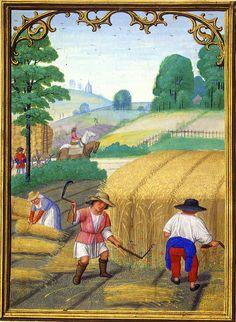 Da Costa hours [1515] August Getreide-Ernte