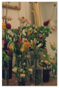 fleurs Objects, Joy, Boutique, Nice, Plants, Drawing Rooms, Flowers, Glee, Boutiques