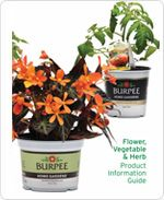 Burpee Home Gardens flower, vegetable, herb product guide. Plant Catalogs, Burpees, Planter Pots, Home And Garden, Gardens, Herbs, Vegetables, Flowers, Ideas