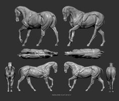 Means_ Horse Sculpt In Pose WIP cont | UArtsy