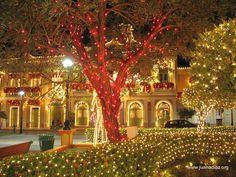 Christmas in Puerto Rico / Municipality : Juana Díaz, Puerto Rico My destination Christmas Day...2013