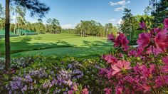 Home - 2015 Masters Tournament Our Residential Golf Lessons are for beginners, Intermediate & advanced. Our PGA professionals teach all our courses in an incredibly easy way to learn and offer lasting results at Golf School GB   www.residentialgolflessons.com