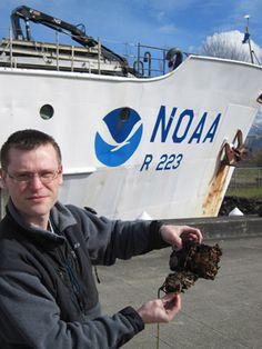 Case Study: NOAA | Ecovative Design