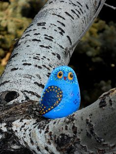 This little owl is a unique little character painted on a rock taken from a Colorado river. Its whimsical little face is very interested and by mayra
