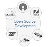 Open source development is one of the best option for you business website development