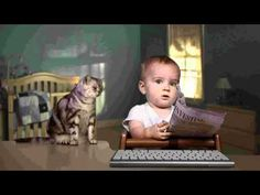 e trade baby and cat