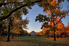 45 Signs You're An Illini at the University of Illinois Champaign - Urbana