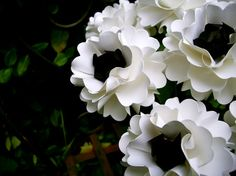 Black & White - Anemone -  Handmade Paper Flower -  Oriental Poppy -  by DragonflyExpression