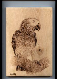 Handmade Pyrography painting of a grey parrot (Painted by Heart Pyr) Parrot Painting, Pyrography, Pet Birds, Grey, Heart, Handmade, Animals, Gray, Hand Made