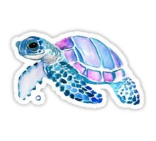 Lovely Turtle Sticker