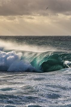 wavemotions: Enclosure by William Patino