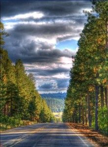 Route to Flagstaff Arizona   Very laid back and beautiful.