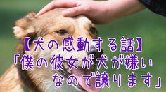 【1分涙腺崩壊】僕の彼女が犬が嫌いなので譲ります【犬の感動する話】  「彼女が犬嫌いなので、誰か譲ります」犬嫌いの彼女のため、男性が出した結論。しかしその結末は驚くべき展開となった…。   ☆☆☆☆☆☆ 涙腺崩壊-1分で感動!では、 泣ける話、感動する話を 厳選して配信しています。   音と画像で心震える感動を…。  チャンネル登録すると 新しい動画がスグに見れます☆ ▼▼▼ http://www.youtube.com/subscription_center?add_user=namidaafureru