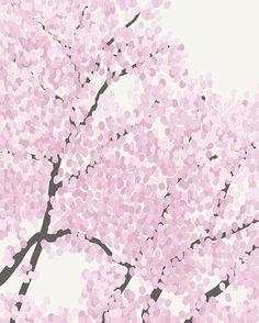 Fine Art Print.  Magnolia Tree in Bloom.  April 24 by joreyhurley