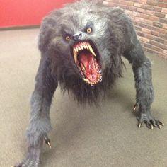 @ Joe Rogan's Studio American Warewolf in London. I always invision this demon lurking in the dark outside.