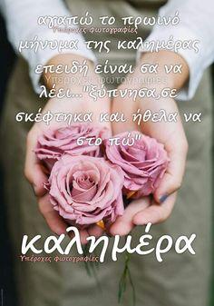 Good Morning, Rose, Flowers, Wallpapers, Buen Dia, Pink, Bonjour, Wallpaper, Roses