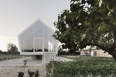 Although innovative in construction, the simple and pure gabled form relates to the character of the rural setting and the agrarian use of the building. Elevated slightly above the ground, the home inflicts minimal intrusion on the existing landscape. #dwell #orchard #tuscany #italy
