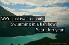 We're just two lost souls swimming in a fish bowl, year after year, Running over the same old ground. What have we found? The same old fears. - Wish You Were Here,  Pink Floyd