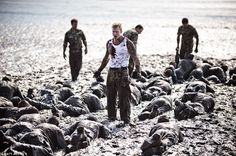 Crawling through the mire of the Exe estuary in Devon, these recruits are taking part in the notorious Mud Run - the most feared part of the Royal Marines' training course Military Memes, Military Love, Royal Marines Training, Marine Commandos, Once A Marine, British Armed Forces, Mud Run, War Photography, Navy Seals