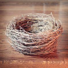 DIY Bird's Nest Newborn Photography Prop