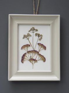How to: framed pressed flowers